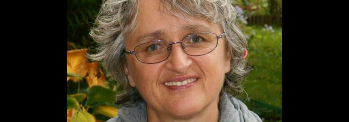 Homo Ludens - Muriel Launois - Le jeu en ergothérapie